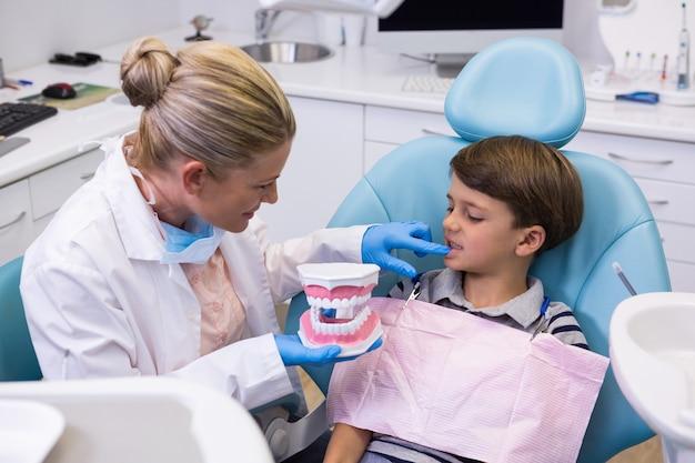 Hoge hoekmening van tandarts die tandvorm houdt terwijl het onderzoeken van jongen