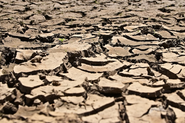 Hoge hoekopname van de gedroogde en gebarsten modderige grond