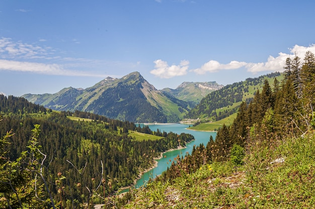 Hoge hoekopname van een prachtige turquoise rivier tussen de heuvels in longrin, zwitserland