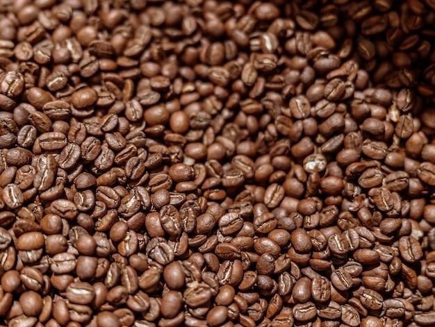 Hoge kwaliteit vers gebrande arabica koffiebonen