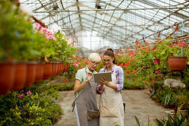 Hogere en jonge moderne bloemistvrouwen die een digitale tablet bekijken