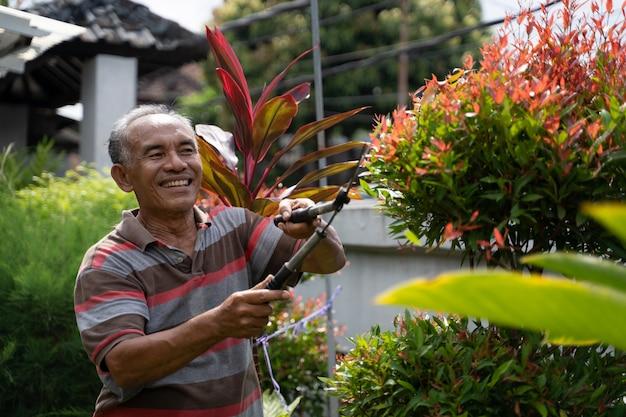 Hogere mannelijke tuinman die wat blad snijdt
