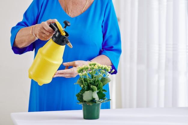 Hogere vrouw sproeiende bloem