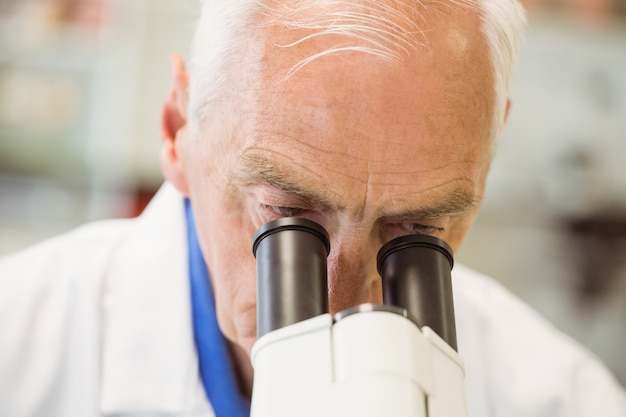 Hogere wetenschapper die met microscoop werkt