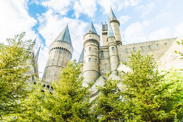 Hogwarts school of witchcraft castle and wizardry replica