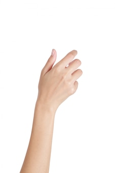 Holding van de vrouwen de lege hand met achterhandkant op wit wordt geïsoleerd dat