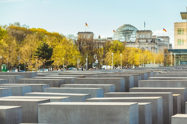 Holocaust memorial in berlijn met de reichstag
