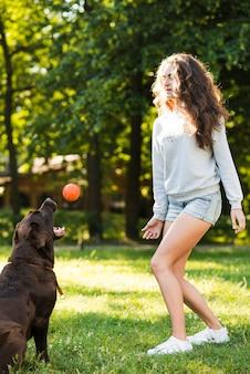 Hond die bal vangen die door vrouw in park wordt gegooid