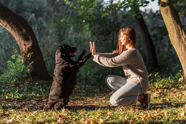 Hond die hoogte vijf geeft aan zijn huisdiereneigenaar bij park