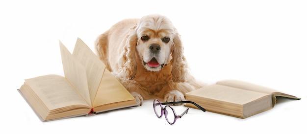 Hond en boeken op wit wordt geïsoleerd