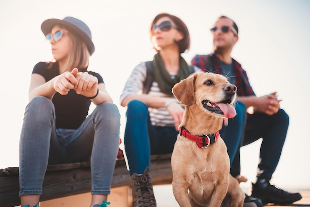 Hond en familiezitting openlucht op een houten dek
