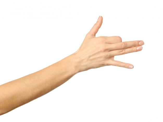 Hond gebaar. vrouwenhand gesturing geïsoleerd op wit