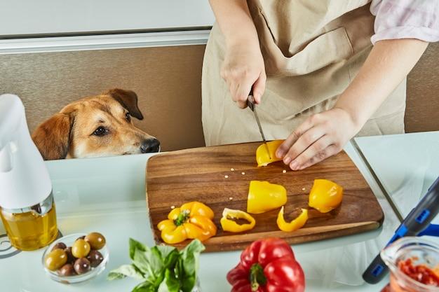 Hond kijkt toe terwijl tiener virtuele online workshop voorbereidt en digitaal recept bekijkt op touchscreen-tablet terwijl hij thuis in de keuken een gezonde maaltijd bereidt.