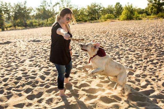 Hond labrador hoofd buiten in de natuur voert een commando uit