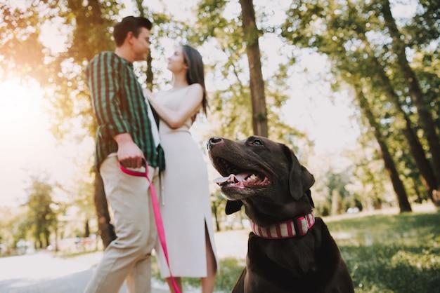 Hond met eigenaren is gelegen in green park sunny summer