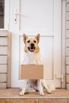 Hond met kartonnen banner