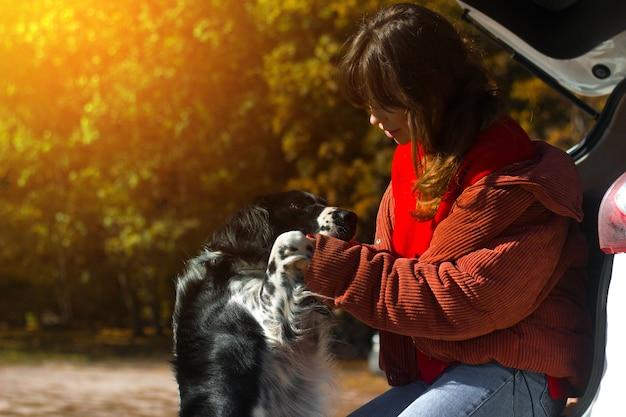 Hond russische spaniël leunt tegen de vrouwelijke meesteres bij de auto