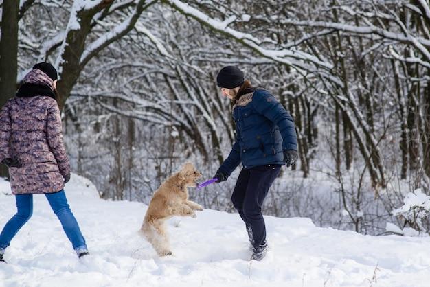 Hond springen en vangen violet ring speelgoed in mannelijke handen