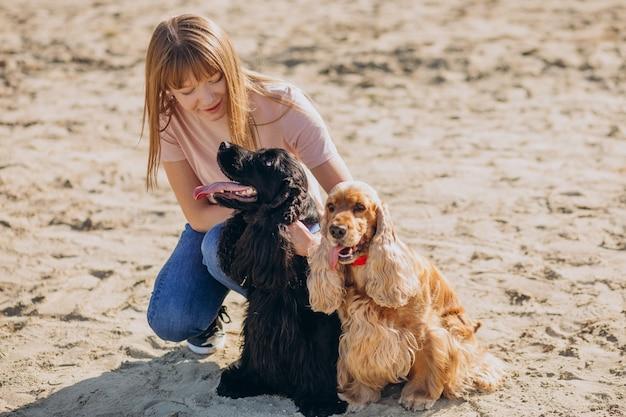 Hondenuitlater die een wandeling maakt met cocker-spaniëlhonden