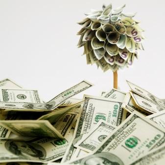 Honderd dollar bankbiljetten vielen van een geldboom