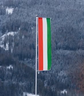 Hongaarse vlag op grote paal tegen dennenbos bedekt met sneeuw