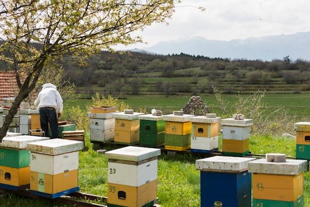 Honing boerderij landschap