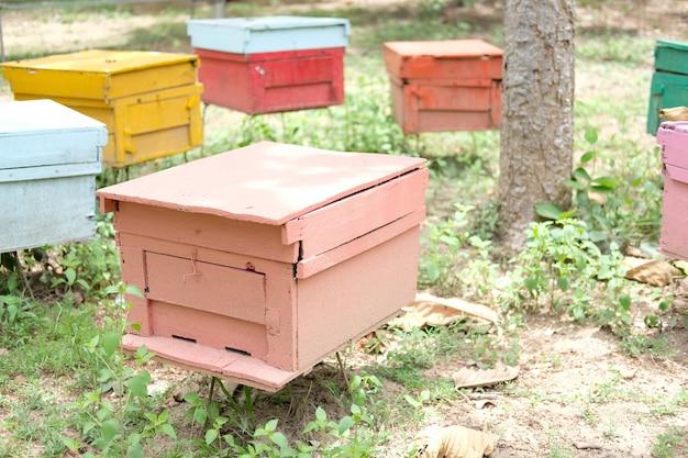Honingbij bijenkorf huizen in de natuur