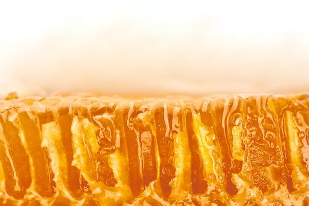 Honingraat macro close-up textuur, kopieer ruimte witte achtergrond. heerlijk limoenhoningpatroon. liefde voor snoep.