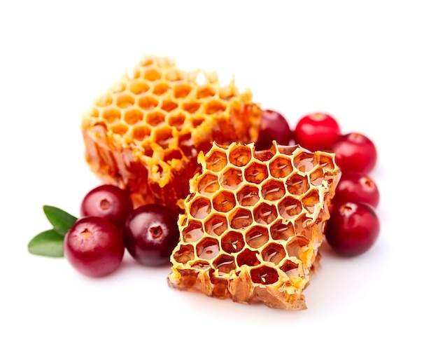 Honingraat met amerikaanse veenbessen op wit