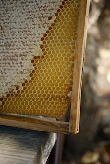 Honingraat met honing op een oude houten stoel in het dorp