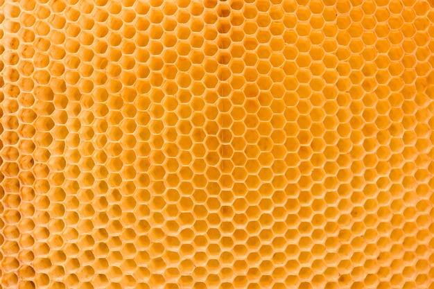 Honingraat