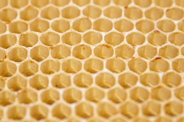 Honingraatcellen macro