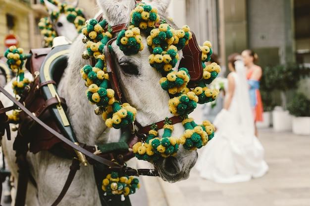 Hoofd van spaanse renpaarden versierd met guirlande