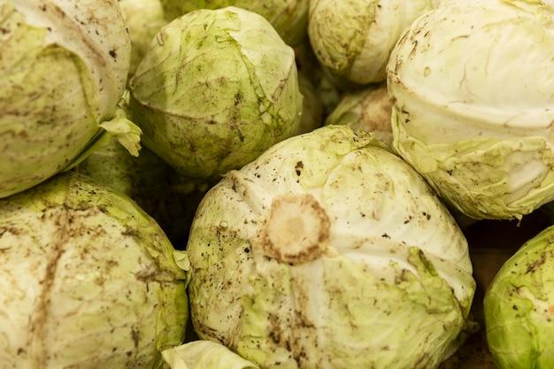 Hoofden verse vuile kool in een doos in de winkel. detailopname. vitaminen en gezonde voeding. nieuwe oogst.