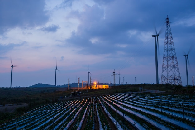 Hoogspanningshulpkantoor en windmolen met de blauwe hemel van het aardbeiveld bij zonsondergang.