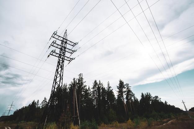 Hoogspanningsleidingen onder bomen onder bewolkte hemel. de distributietoren van de elektriciteit in bos met exemplaarruimte. minimalistische weergave van onderen op palen met draden bij bewolkt weer.