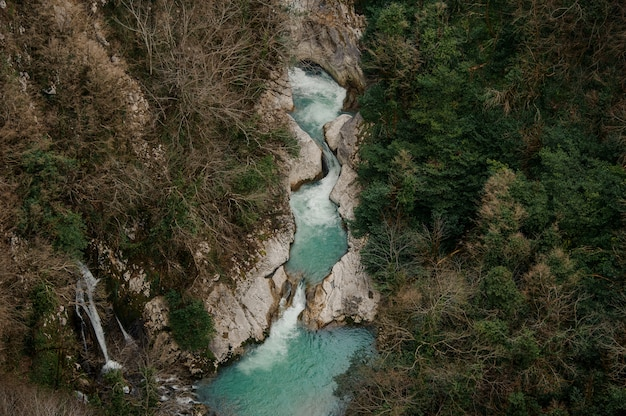 Hoogste mening die van krachtige blauwe rivierstroom in bos van georgië stromen. martvili-kloof. okatse canyon