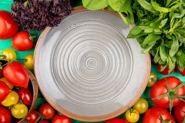 Hoogste mening van groenten als de spinaziebasilicum van de tomatenkoriander met plaat op groen