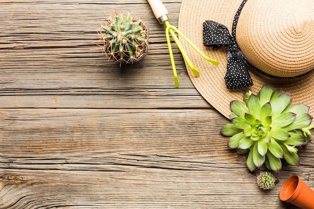 Hoogste mening van het tuinieren hulpmiddelen op de houten vloer