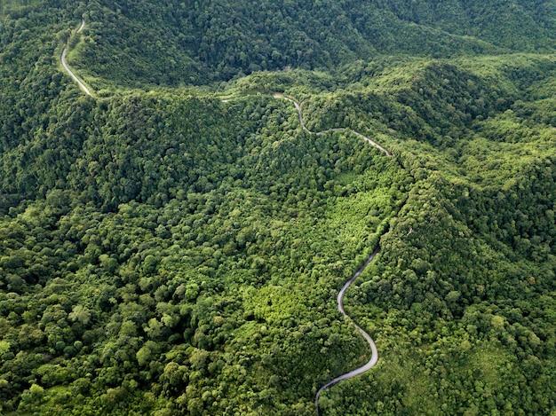 Hoogste menings mooie landelijke weg op de diepe bosberg