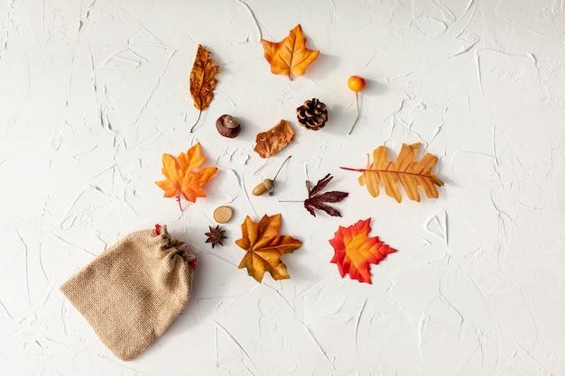 Hoogste menings verschillende bladeren op witte achtergrond