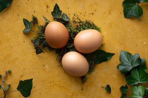 Hoogste meningsbos van eieren op het lijstconcept