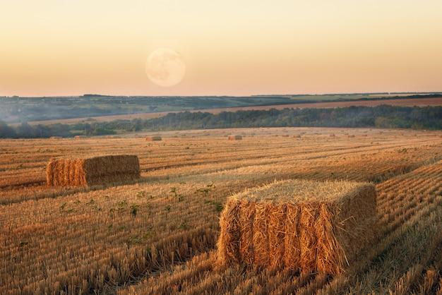Hooibergen in een veld bij zonsondergang