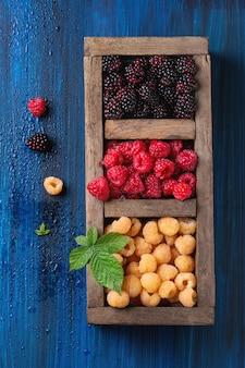 Hoop kleurrijke frambozen