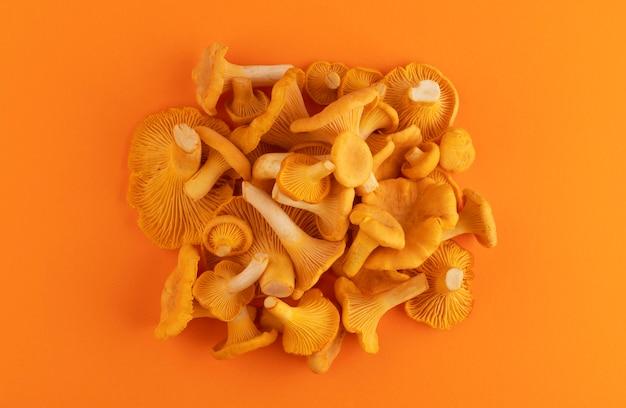 Hoop van rauwe verse cantharelpaddestoelen op oranje kleur