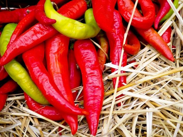 Hoop van rijpe grote rode pepers op straatmarkt, rijpe rode, groene chili, herfstoogst