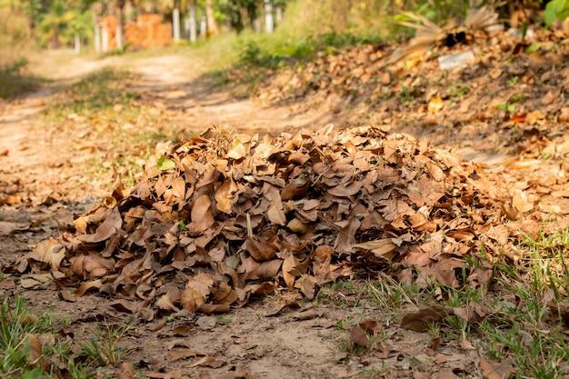 Hopen van gevallen bladeren in de herfsttuin