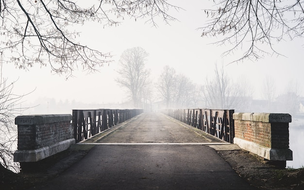 Horizontaal griezelig schot van een brug die tot een mistig bos met huizen leidt