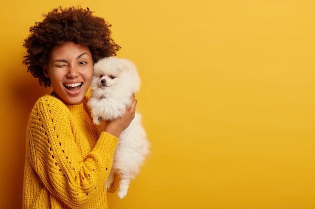Horizontaal schot van optimistische dame knipoogt ogen, blij om rashond te kopen, draagt witte spitz puppy, veel plezier samen binnen, draagt gebreide trui, vormt binnen tegen gele muur.