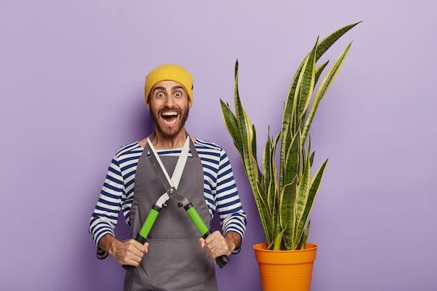 Horizontaal schot van optimistische professionele bloemist geeft om binnen potplant, houdt snoeischaar